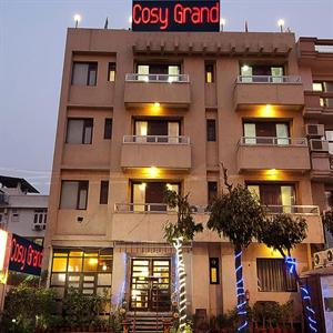 Cosy Grand Hotel New Delhi
